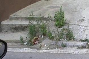 VIDEO. Tour tra erbacce e strade sconnesse