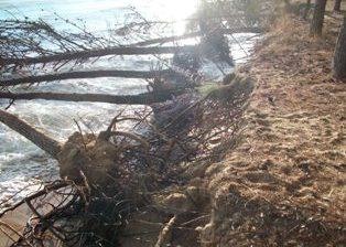 Eraclea Minoa, inizio lavori per la messa in sicurezza della spiaggia e della pineta