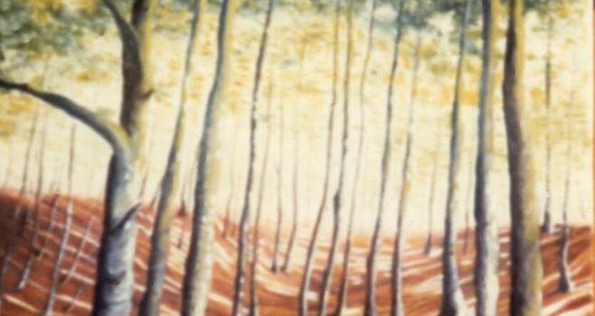 ARTE. La Sila, olio su tela 50 × 70 di Gabriella De Masi