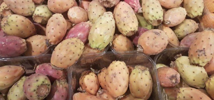Fichidindia: in Sicilia li snobbano, al Nord li acquistano a caro prezzo
