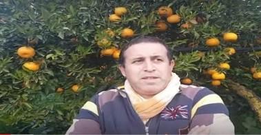 VIDEO. Arrivano da Cattolica Eraclea le arance da agricoltura consapevole