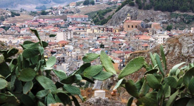 Agricoltura consapevole: continua a suscitare interesse l'intervista al produttore di arance di Cattolica Eraclea