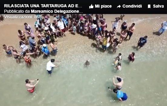 VIDEO. Rilasciata a Eraclea Minoa una tartaruga Caretta caretta