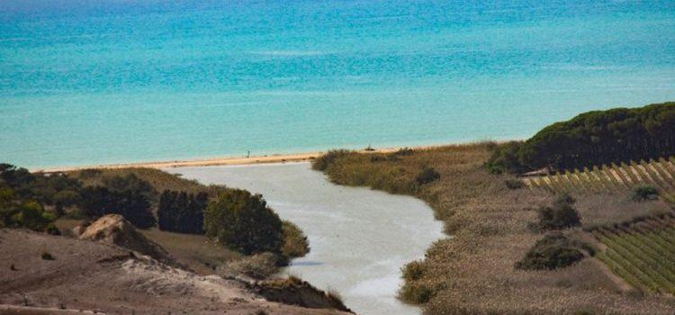 VIDEO. Riserva Naturale Orientata Foce del fiume Platani